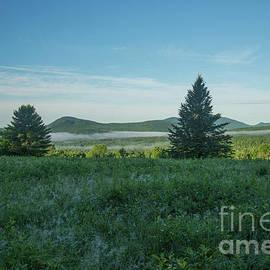 Alana Ranney - Morning Dew and Mist