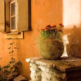 Cliff Wassmann - Morning Light Tuscany
