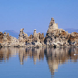 Morning Reflection Mono Lake by Jerry Griffin