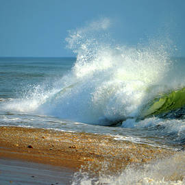 Dianne Cowen - Morning Surf