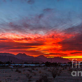 Morning View by Robert Bales