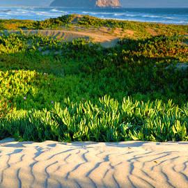 Morro Rock and Beach III by Steven Ainsworth