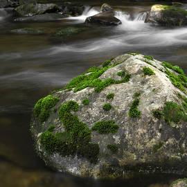 John Stephens - Mossy Boulder in Mountain Stream