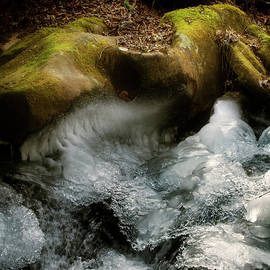 Mossy Rocks And Ice by Greg and Chrystal Mimbs