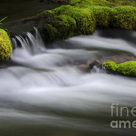 Mossy Rocks  Oregon 1 by Bob Christopher