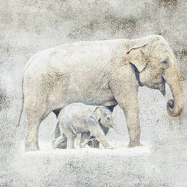 Georgiana Romanovna - Mother And Baby Elephant Minimalism