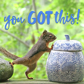 Motivational Squirrel - You Got This by Peggy Collins