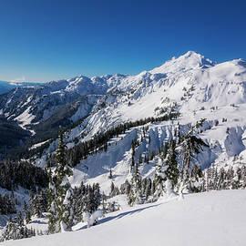 Pelo Blanco Photo - Mount Baker