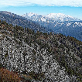 Mount Baldy Vista by Glenn McCarthy Art and Photography