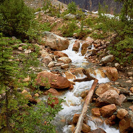 Mount Edith Cavell Stream 1 by David Beebe