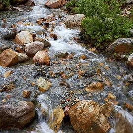 David Beebe - Mount Edith Cavell Stream 2