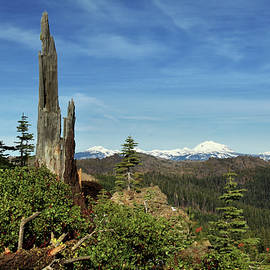 James Eddy - Mount Lassen From A Distance