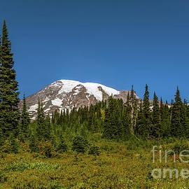 Marv Vandehey - Mount Rainier 10