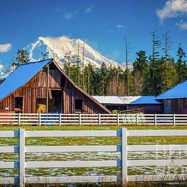 Mount Rainier Barns - Inge Johnsson