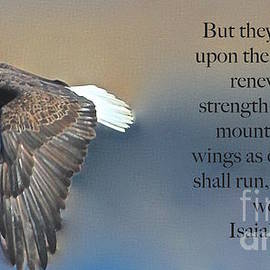 Mount Up With Wings As Eagles