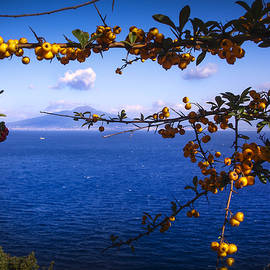 Mount Vesuvius From Sorrento by Jed Holtzman