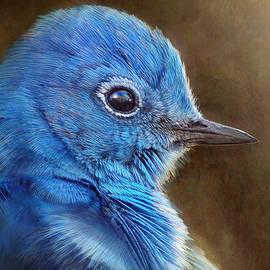 R christopher Vest - Mountain Bluebird Face