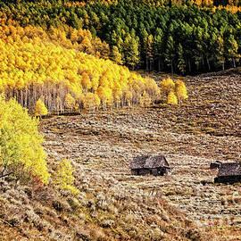 Scott Kemper - Mountain Homestead