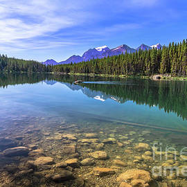 Jeweled Turquoise Reflections by Norma Brandsberg