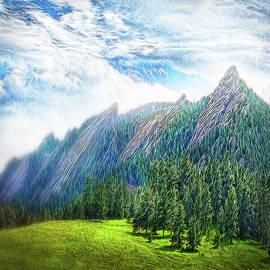 Joel Bruce Wallach - Mountain Pine Meadow