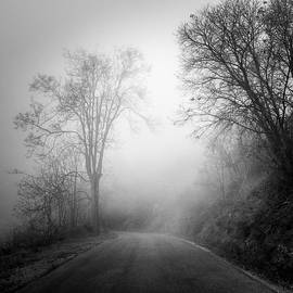Guido Montanes Castillo - Mountain road   Into the woods