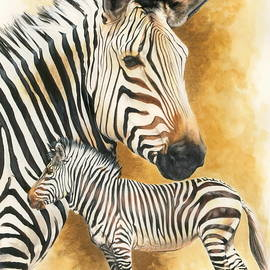 Barbara Keith - Mountain Zebra