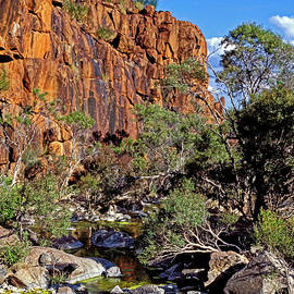 Steven Ralser - Mt Hay Creek - Central Australia