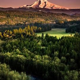 Mt. Hood Plum Sunset  by Becca Fieken