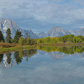 Mt. Moran From Oxbow Bend by Frank Madia