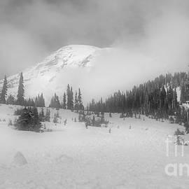 Jane Powell - Mt. Rainier