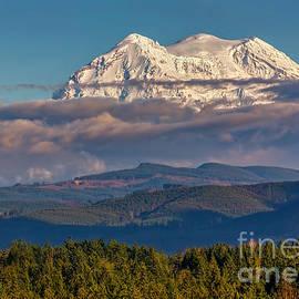 Mt Rainier by Jean OKeeffe Macro Abundance Art