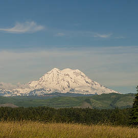 Mt Rainier - National Park Washington by Brian Harig
