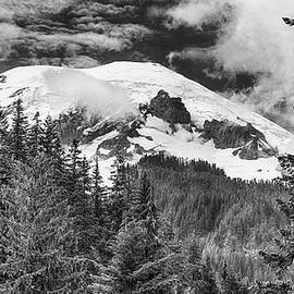 Stephen Stookey - Mt Rainier View - bw