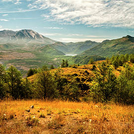 Mt St Helens I by Brian Harig