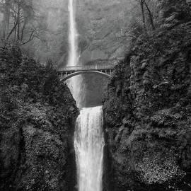 Multnomah Falls - Black and White by Scott Cameron
