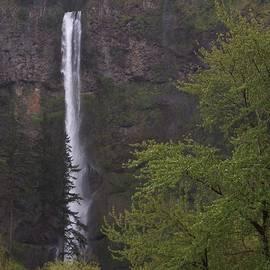 Randy Edwards - Multnomah Falls