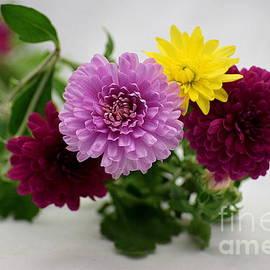 Patti Whitten - Mums Bouquet
