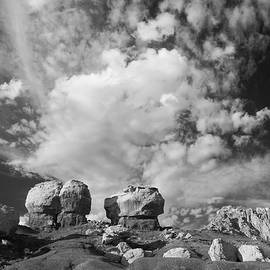Bob Neiman - Mushroom Rocks and Sky 0445