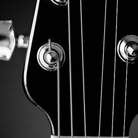Musical String by Karol Livote