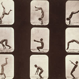Muybridge Locomotion Back Hand Spring by Photo Researchers