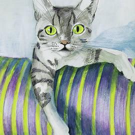 My cat Sveti marvels  by Vali Irina Ciobanu