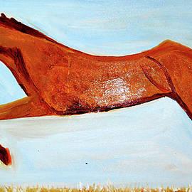 Anand Swaroop Manchiraju - My Favorite Horse