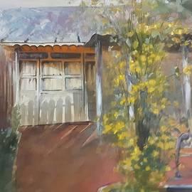 My home in the eavning by Vali Irina Ciobanu