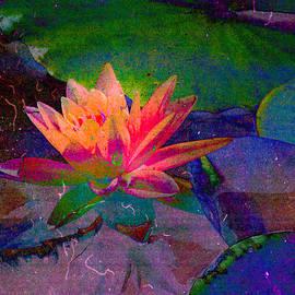 Jerri Moon Cantone - My Water Lily