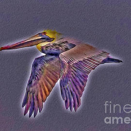 Mystical Brown Pelican Soaring Spirit by DBHayes
