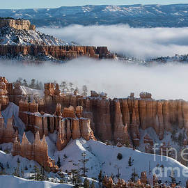 Mystical Morning at Bryce Canyon, Utah by Sandra Bronstein