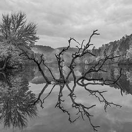 Mystical Reflections by Debra and Dave Vanderlaan