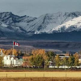 Brad Allen Fine Art - Nanton, Alberta