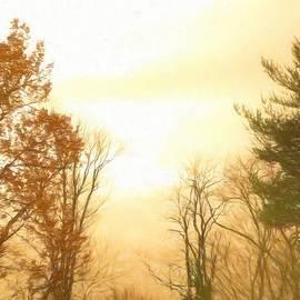 Debra Lynch - Nature Of The Earth