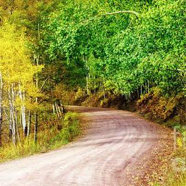 Nature Road by Scott Kemper